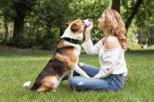 Međunarodni dan pasa – povod za dodatnu nežnost